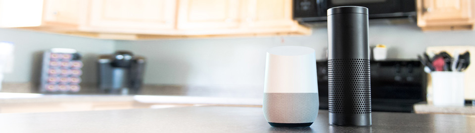 DCU Voice Banking for Alexa and Google Home